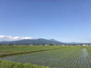湯川村風景6月