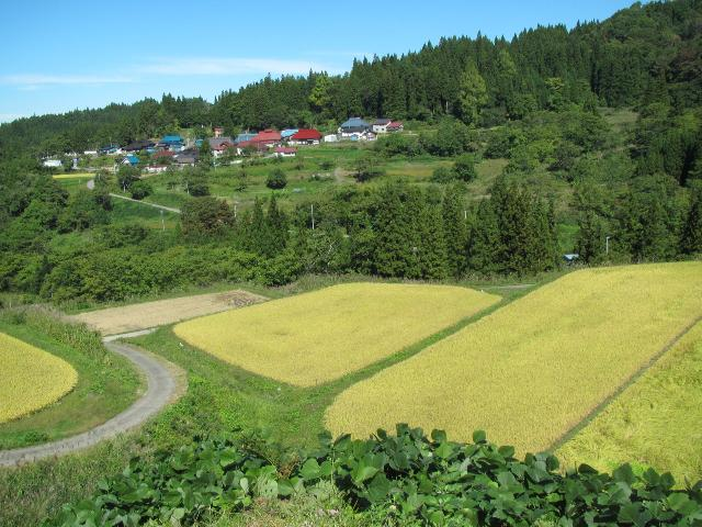 柳津町の風景写真