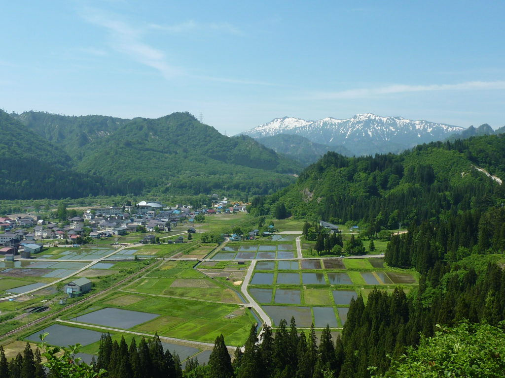 田園風景の写真