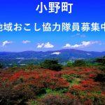 """【小野町】小松菜栽培で地域を元気にする""""稼げる農家""""になっていただける地域おこし協力隊員を募集します!"""