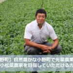 【小野町】自然豊かな小野町で先輩農業者と小松菜栽培で儲かる農家を目指してくださる隊員募集中!